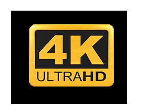 GoXtreme 4K Logo