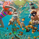 GoXtreme Reef